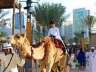 الإمارات.. قطاع السياحة يوفر 611 ألف فرصة عمل