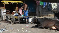 Plans afoot to clean India's offices with cow urine