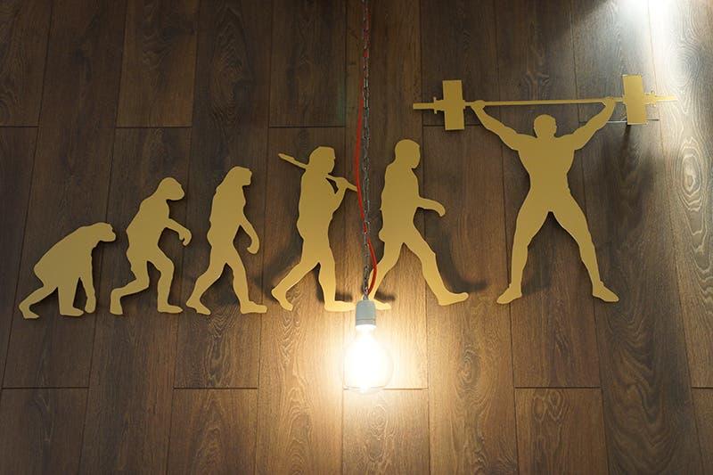 Gyms Kitchen