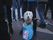 حيوانات شاركت في تظاهرة باريس حاملة شعارات الحرية