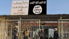 خلیفہ بغدادی کے حکم پر 56 داعشی جنگجو قتل
