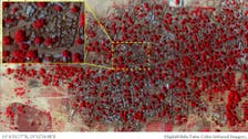 Amnesty says satellite images show Nigerian destruction