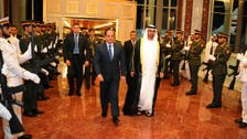 Sisi: UAE-Egypt relations will always be special