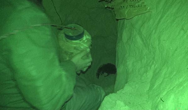 أحد عناصر التنظيمأثناء زرع العبوة الناسفة أسفل الأنبوب