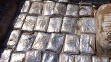 Saudi authorities confiscate 12 tons of Hasheesh
