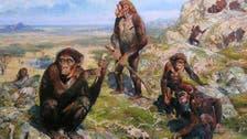 Study: Three-million-year-old ancestor had human-like hands