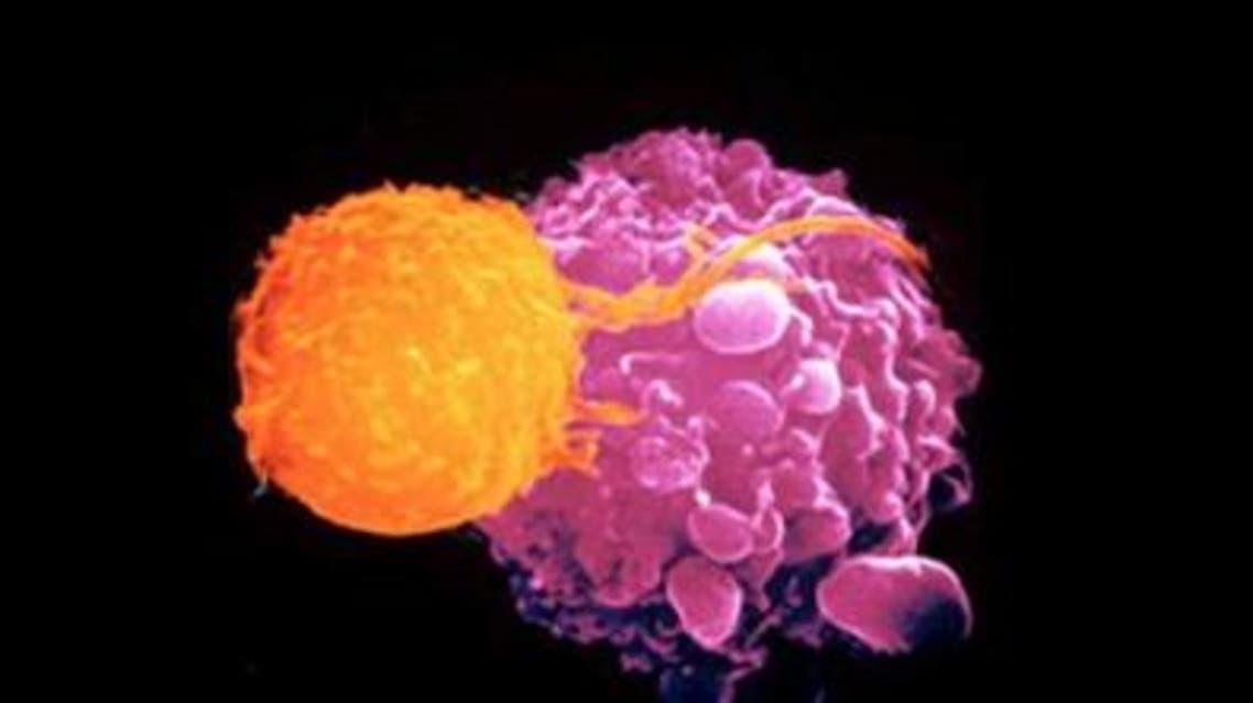 خلايا