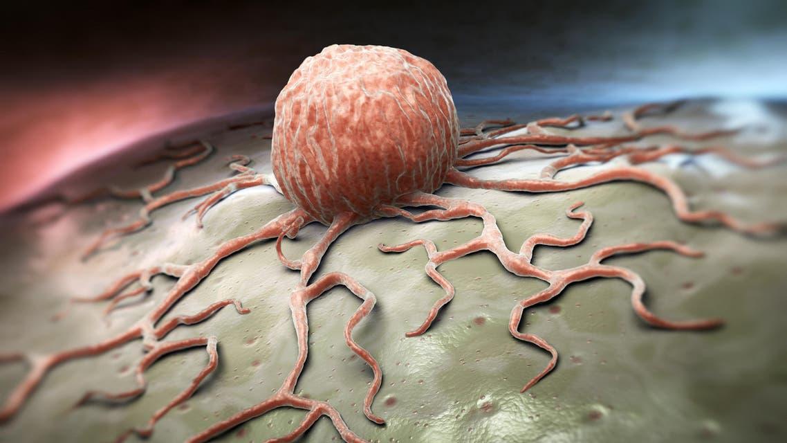 cancer cells shutterstock