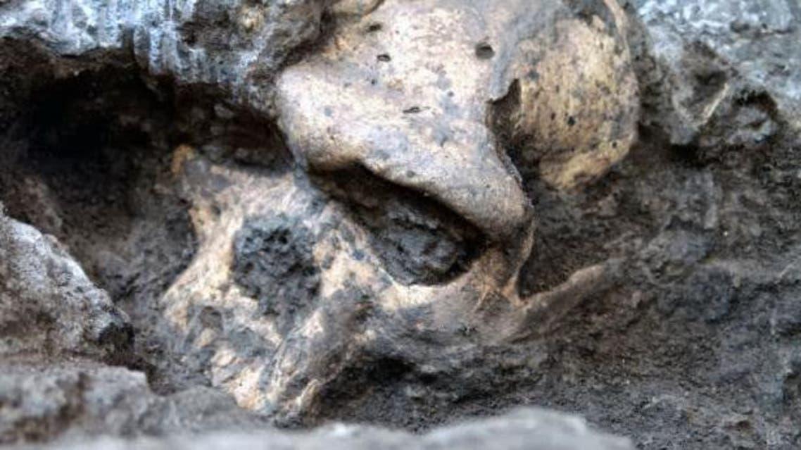 جمجمة للإنسان الأول