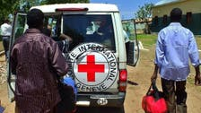 Three Sudanese Red Cross workers killed in Blue Nile area