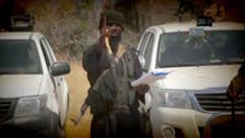Boko Haram kidnaps 20 people in Cameroon, executes 12