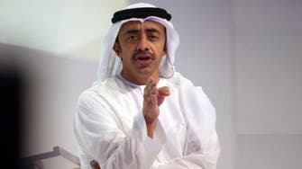 UAE FM: Egypt's stability is key to Arab world