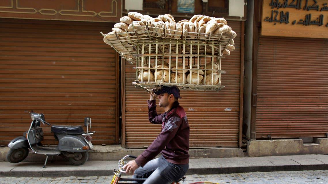 Egypt Bread Wheat AP