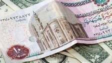 Egyptian pound steady for seventh straight dollar sale