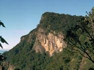 شجرة تنقذ عريسا سقط بهاوية عمقها 1200 متر بسريلانكا