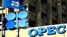 رئيس أبحاث أوبك: الطلب يتزايد والنفط لم يفقد بريقه