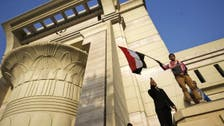 Egypt brands law banning dual-nationals in parliament 'unconstitutional'