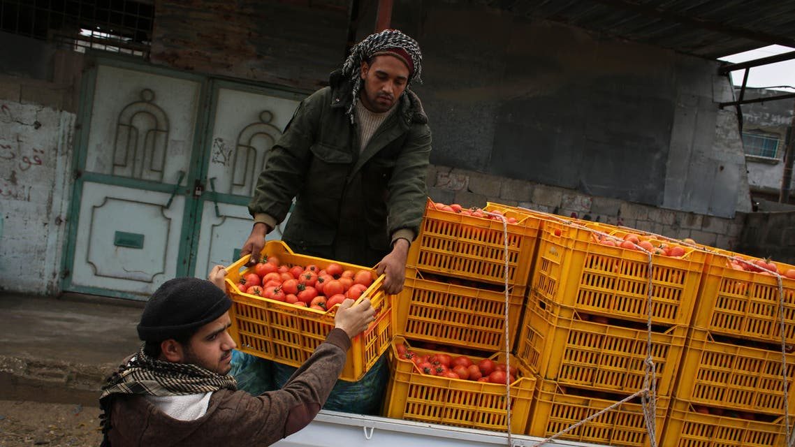 Gaza farmers export first produce to Israel after 8 years (AFP)