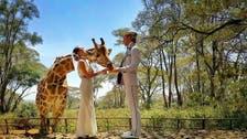 Acrobat couple plans 38 weddings around the world