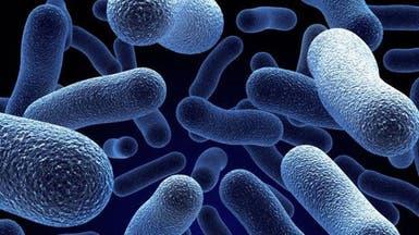 """أميركا تسعى حثيثاً للقضاء على البكتيريا """"المروعة"""""""