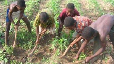 عمالة الأطفال ظاهرة تتزايد في #موريتانيا
