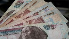 Egyptian pound steady on official and black market