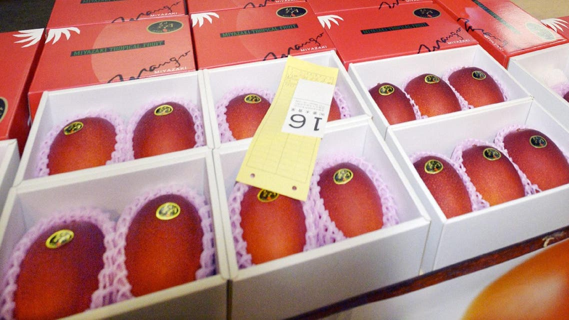 A pair of mangos is auctioned off at the wholesale market in Miyazaki in Japan's southern island of Kyushu for some 300,000 yen (2,500 USD) on April 13, 2015. (AFP)