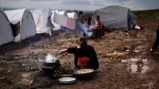 الفاو: 13 مليون سوري يعانون انعدام الأمن الغذائي
