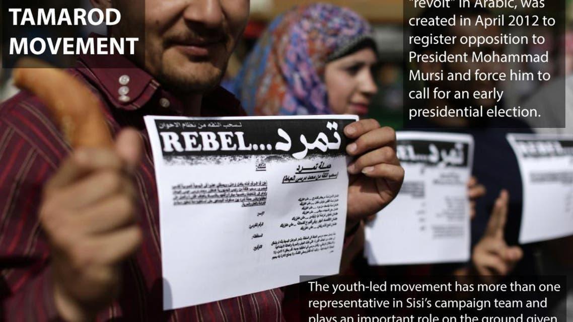 Egypt's Tamarod movement infographic