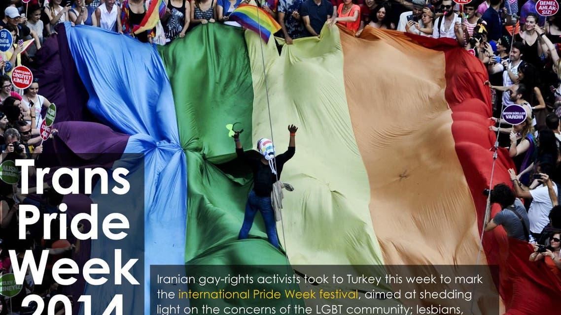 Trans Pride Week 2014 infographic