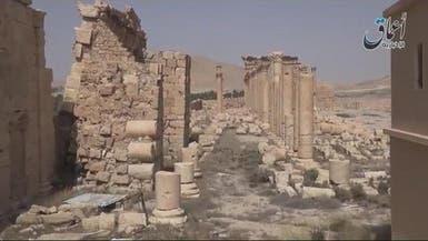 بالفيديو.. تدمر الأثرية تحت قبضة داعش