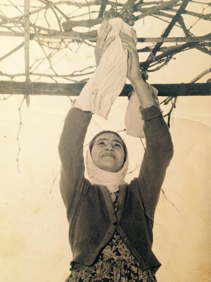 A Palestinian woman picking grapes, from the family album of Jamal Yousef Bek Ali. (Courtesy: Palestinian Museum)