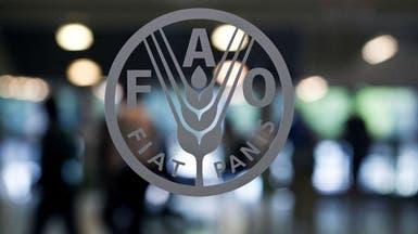 ارتفاع أسعار الغذاء العالمية 5% في سبتمبر