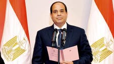 After a year in power, what has Egypt's President Sisi achieved?