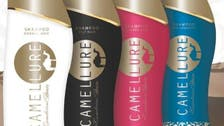 Cleopatra style: Dubai company developing camel milk skincare