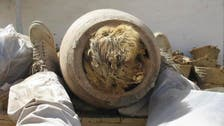 Study: Grave of 8 million mummified dogs unearthed in Egypt