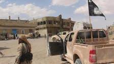 """المرصد: مقتل 6 أجانب من """"داعش"""" في غارة قرب الحسكة"""