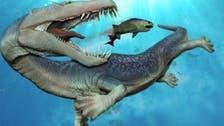 """وحش """"بحري"""" عاش على كوكب الأرض قبل 500 مليون عام"""