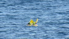 Baby saved after drifting out to Turkey sea in inflatable seat