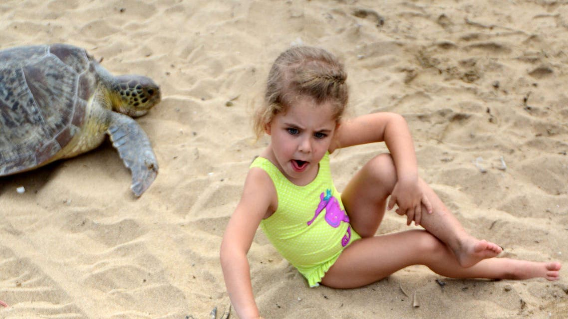 A child sits with a green turtle before releasing them at a beach in Sanur on the Indonesian resort island of Bali on July 9, 2015.