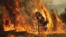 حرائق الغابات تحتدم في شمال اسبانيا