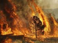 حريق هائل في كاليفورنيا يهدد آلاف السكان