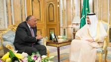 Saudi king meets Egyptian foreign minister