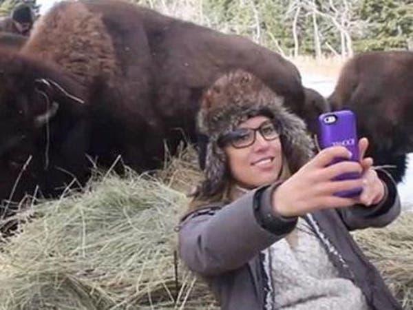 """ثور أميركي ينطح امرأة حاولت التقاط صورة """"سيلفي"""" معه"""