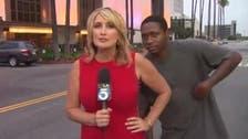 'Videobomber' startles reporter on live television