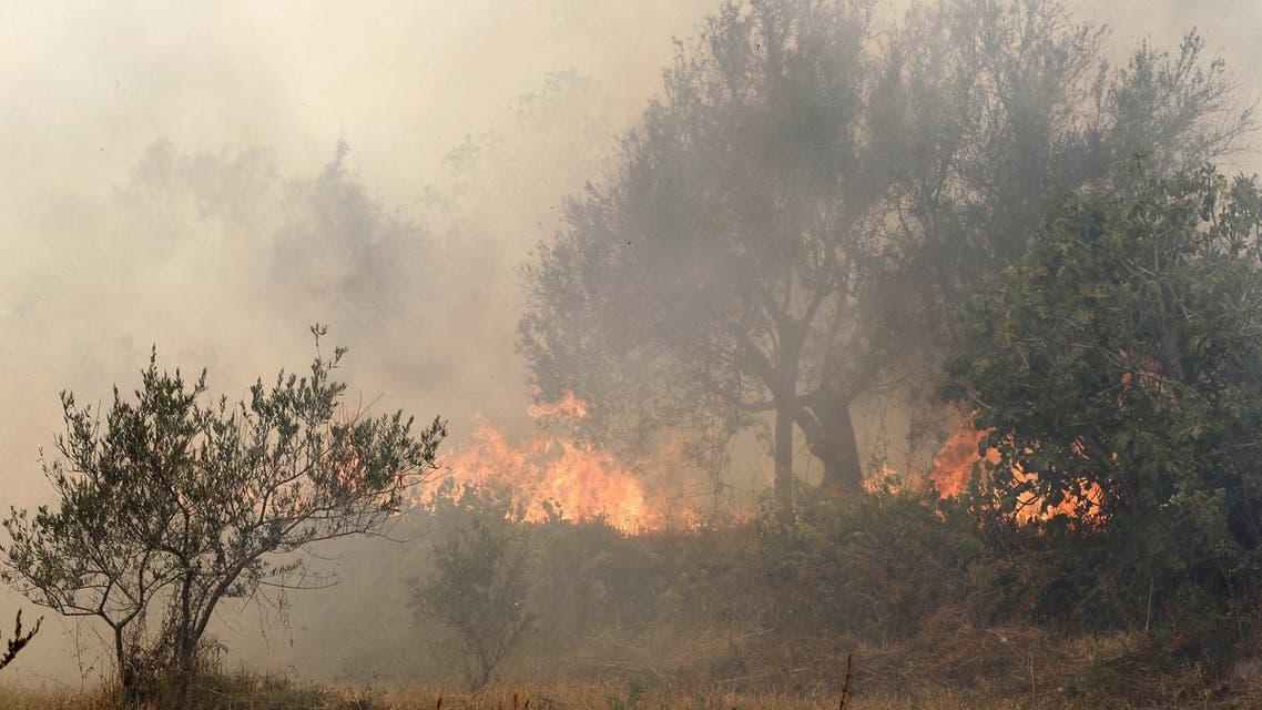 حرائق الغابات في حمص سوريا