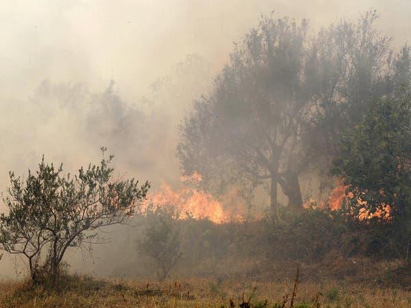 موجة حر شديدة تشعل حرائق غابات في حمص