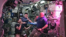 Space salad: Astronauts grow vegetables in space