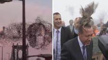 Feathery friends: Putin and Erdogan bird encounters go viral