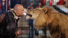 Heart-stopping moment Egyptian feeds lion holding blade in his teeth